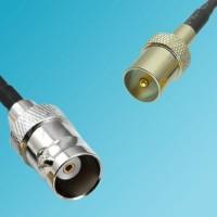 BNC Female to DVB-T TV Male RF Cable
