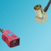 FAKRA SMB L Female to DVB-T TV Male Right Angle RF Cable