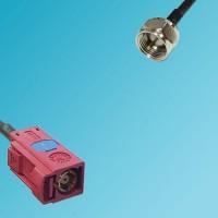 FAKRA SMB L Female to F Male RF Cable