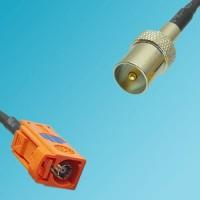 FAKRA SMB M Female to DVB-T TV Male RF Cable