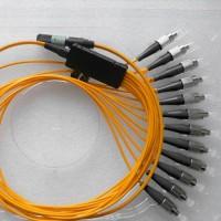 12 Fiber MPO FC 50/125 OM2 Multimode Fanout Patch Cable